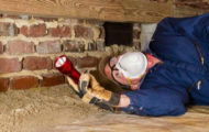 termite house inspection